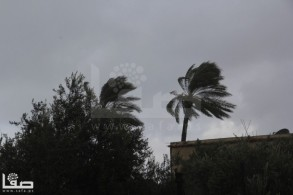 Jan 7 2013 Aftermath Storm West Bank Palestine 15