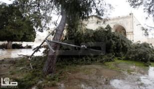 Jan 7 2013 Aftermath Storm West Bank Palestine 25