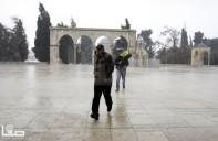 Jan 7 2013 Aftermath Storm West Bank Palestine 29