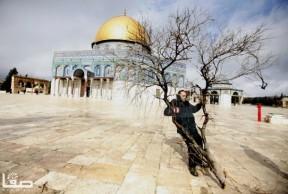 Jan 7 2013 Aftermath Storm West Bank Palestine 33