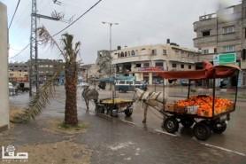 Jan 7 2013 Aftermath Storm West Bank Palestine 34
