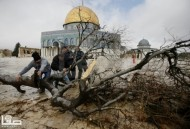Jan 7 2013 Aftermath Storm West Bank Palestine 40