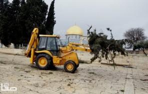 Jan 7 2013 Aftermath Storm West Bank Palestine 44