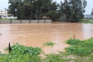 Jan 8 2013 Flooding is Jenin 2