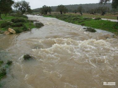 Jan 8 2013 Floods in West Bank Photo via Paldf