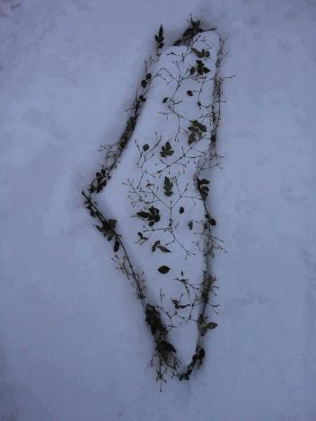 Jan 9 2013 Palestine in the Snow Art - Photo via paldf