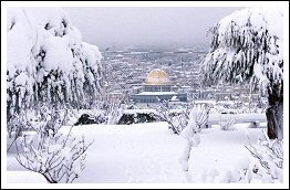 Palestine in the Snow - January 2013 (Click to go to the Album for photos and video)