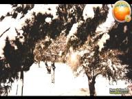 Snow in Palestine - Snow in Jerusalem Photo via QudsMedia - 18