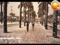 Snow in Palestine - Snow in Jerusalem Photo via QudsMedia - 20