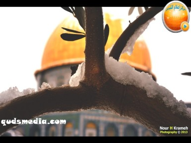 Snow in Palestine - Snow in Jerusalem Photo via QudsMedia - 30