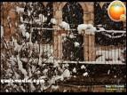 Snow in Palestine - Snow in Jerusalem Photo via QudsMedia - 4