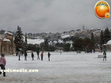 Snow in Palestine - Snow in Jerusalem Photo via QudsMedia - 48