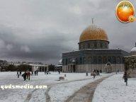 Snow in Palestine - Snow in Jerusalem Photo via QudsMedia - 51