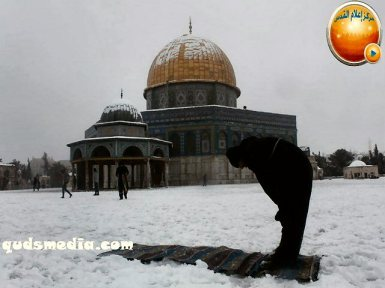 Snow in Palestine - Snow in Jerusalem Photo via QudsMedia - 59