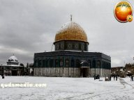 Snow in Palestine - Snow in Jerusalem Photo via QudsMedia - 63