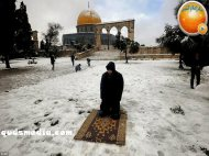 Snow in Palestine - Snow in Jerusalem Photo via QudsMedia - 75