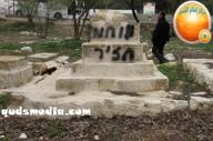 Febr 14 2013 Racist slogans on Jerusalem cenetery - Photo by QudsMedia 5