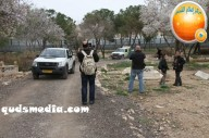 Febr 14 2013 Racist slogans on Jerusalem cenetery - Photo by QudsMedia 50