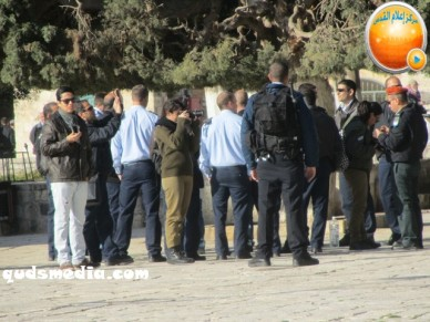 Febr 7 2013 Settlers and armed forces desecrate al-Aqsa Mosque - Photo by QudsMedia 10