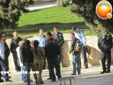 Febr 7 2013 Settlers and armed forces desecrate al-Aqsa Mosque - Photo by QudsMedia 13