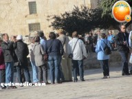 Febr 7 2013 Settlers and armed forces desecrate al-Aqsa Mosque - Photo by QudsMedia 19