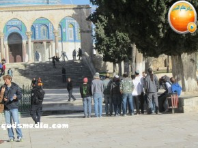 Febr 7 2013 Settlers and armed forces desecrate al-Aqsa Mosque - Photo by QudsMedia 22