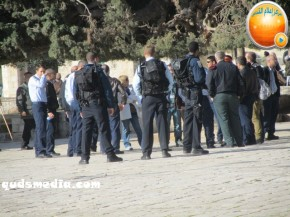 Febr 7 2013 Settlers and armed forces desecrate al-Aqsa Mosque - Photo by QudsMedia 23