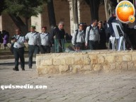 Febr 7 2013 Settlers and armed forces desecrate al-Aqsa Mosque - Photo by QudsMedia 25