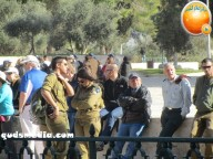 Febr 7 2013 Settlers and armed forces desecrate al-Aqsa Mosque - Photo by QudsMedia 29