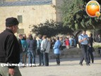 Febr 7 2013 Settlers and armed forces desecrate al-Aqsa Mosque - Photo by QudsMedia 3