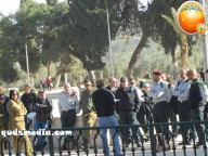 Febr 7 2013 Settlers and armed forces desecrate al-Aqsa Mosque - Photo by QudsMedia 31