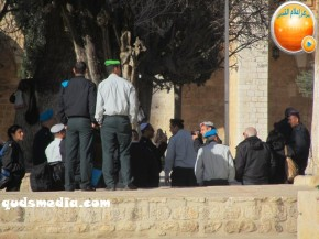 Febr 7 2013 Settlers and armed forces desecrate al-Aqsa Mosque - Photo by QudsMedia 34