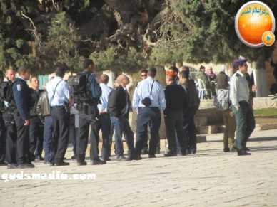 Febr 7 2013 Settlers and armed forces desecrate al-Aqsa Mosque - Photo by QudsMedia 35