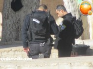 Febr 7 2013 Settlers and armed forces desecrate al-Aqsa Mosque - Photo by QudsMedia 39
