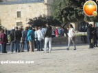 Febr 7 2013 Settlers and armed forces desecrate al-Aqsa Mosque - Photo by QudsMedia 4