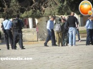 Febr 7 2013 Settlers and armed forces desecrate al-Aqsa Mosque - Photo by QudsMedia 40
