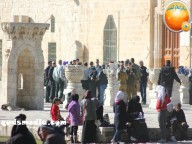 Febr 7 2013 Settlers and armed forces desecrate al-Aqsa Mosque - Photo by QudsMedia 42