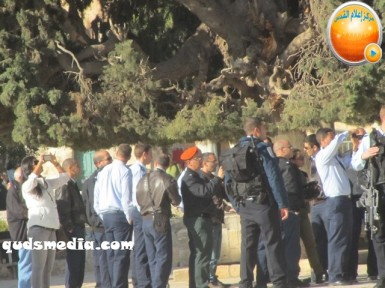 Febr 7 2013 Settlers and armed forces desecrate al-Aqsa Mosque - Photo by QudsMedia 43