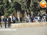 Febr 7 2013 Settlers and armed forces desecrate al-Aqsa Mosque - Photo by QudsMedia 5