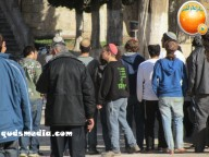 Febr 7 2013 Settlers and armed forces desecrate al-Aqsa Mosque - Photo by QudsMedia 6