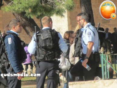Febr 7 2013 Settlers and armed forces desecrate al-Aqsa Mosque - Photo by QudsMedia 7