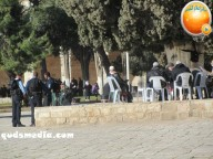 Febr 7 2013 Settlers and armed forces desecrate al-Aqsa Mosque - Photo by QudsMedia 8
