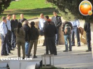 Febr 7 2013 Settlers and armed forces desecrate al-Aqsa Mosque - Photo by QudsMedia 9