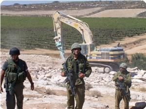 images_News_2013_02_10_land-confiscation_300_0[1]