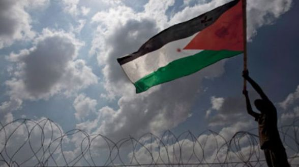 """""""Pro-Palestinian"""