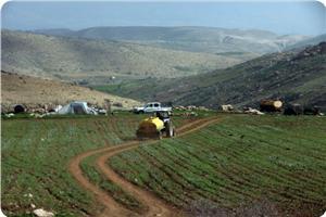 images_News_2013_03_03_bedouin-njv-maleh_300_0[1]
