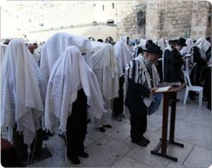 images_News_2013_03_24_jews-at-buraq-wall_300_0[1]