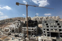 All Israeli settlements in the occupied Palestinian territories are illegal under international law.