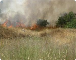 images_News_2013_05_02_fire_300_0[1]