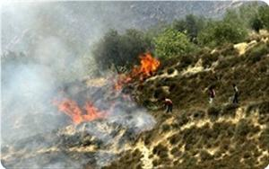 images_News_2013_06_04_fire_300_0[1]